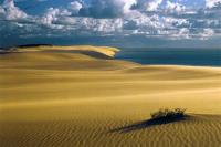 Национальный парк Куршская коса